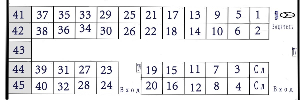 Схема автобуса на 43 места тс м3